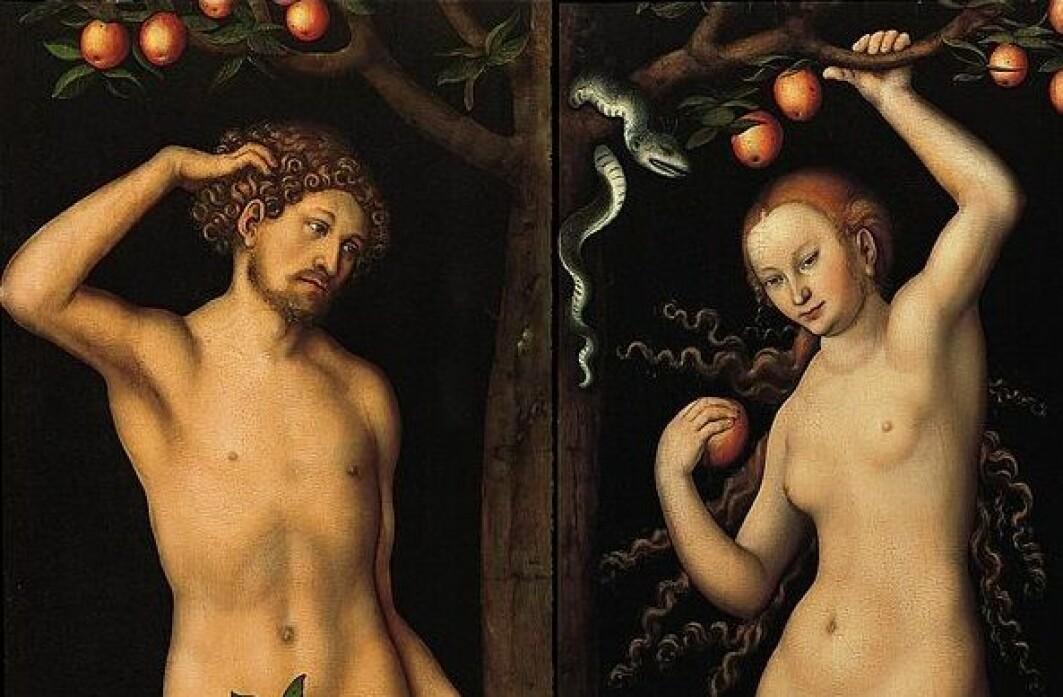 Når vi ser på bilder av to mennesker ved et tre uten klær, står de som regel med et eple. Men det er først i middelalderen eplet for alvor slår igjennom i skildringer av opprinnelsen, sier forsker Søren Holst.