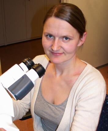 Marte Avranden Kjær har sett hvordan planteoljer og omega-3 påvirker vevstruktur i laks og torsk. (Foto: Reidun Lilleholt)