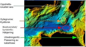 Eksempler på hva marine grunnkart brukes til; her er det blant annet kartlagt en oppdrettslokalitet, gytegrunne for torsk og plassering av en kabeltrase. (Foto: NGU)