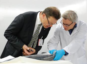 Direktør Terje Martinussen i Eksportutvalget for fisk (til venstre) bruker iPhonen sin for å sjekke hvor fersk fisken er, veiledet av Mats Carlehög i Nofima. (Foto: Lidunn Boge)