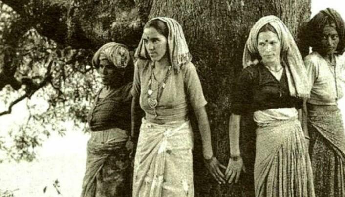 På 70-talet vaks Chipko-rørsla fram i indisk Himalaya. Kvinnene i landsbyen med same namn slo ring om store tre som skulle hoggast, noko dei rettmessig frykta ville føre til ras og flaum. I tillegg til å påverke indisk miljølovgjeving, inspirerte dei naturelskarar i mange land til å drive med treklemming. Foto: NA, CC BY-SA 4.0 Wikimedia Commons.