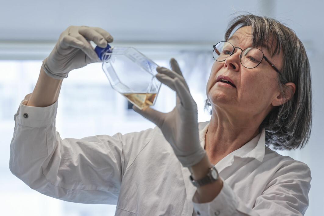 Juryens begrunnelse fremhever at Spurkland har gjort formidling til en integrert del av sitt virke som forsker.