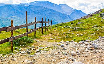 Mange gikk sin første fjelltur sommeren 2020
