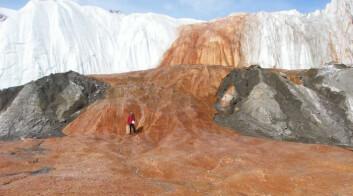 Vannprøver fra området Blood Falls har gitt forskere innsyn i et unikt økosystem under Taylor-breen i Antarktis, der mikroorganismer aktivt benytter seg av jern, svovel og karbon i et slags kretsløp for å oppnå vekst. (Foto: Foto: Benjamin Urmston, Science/AAAS)