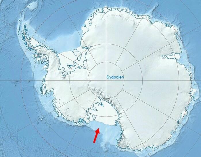 Filmen av manetene er fra Rosshavet (rød pil) i Antarktis.
