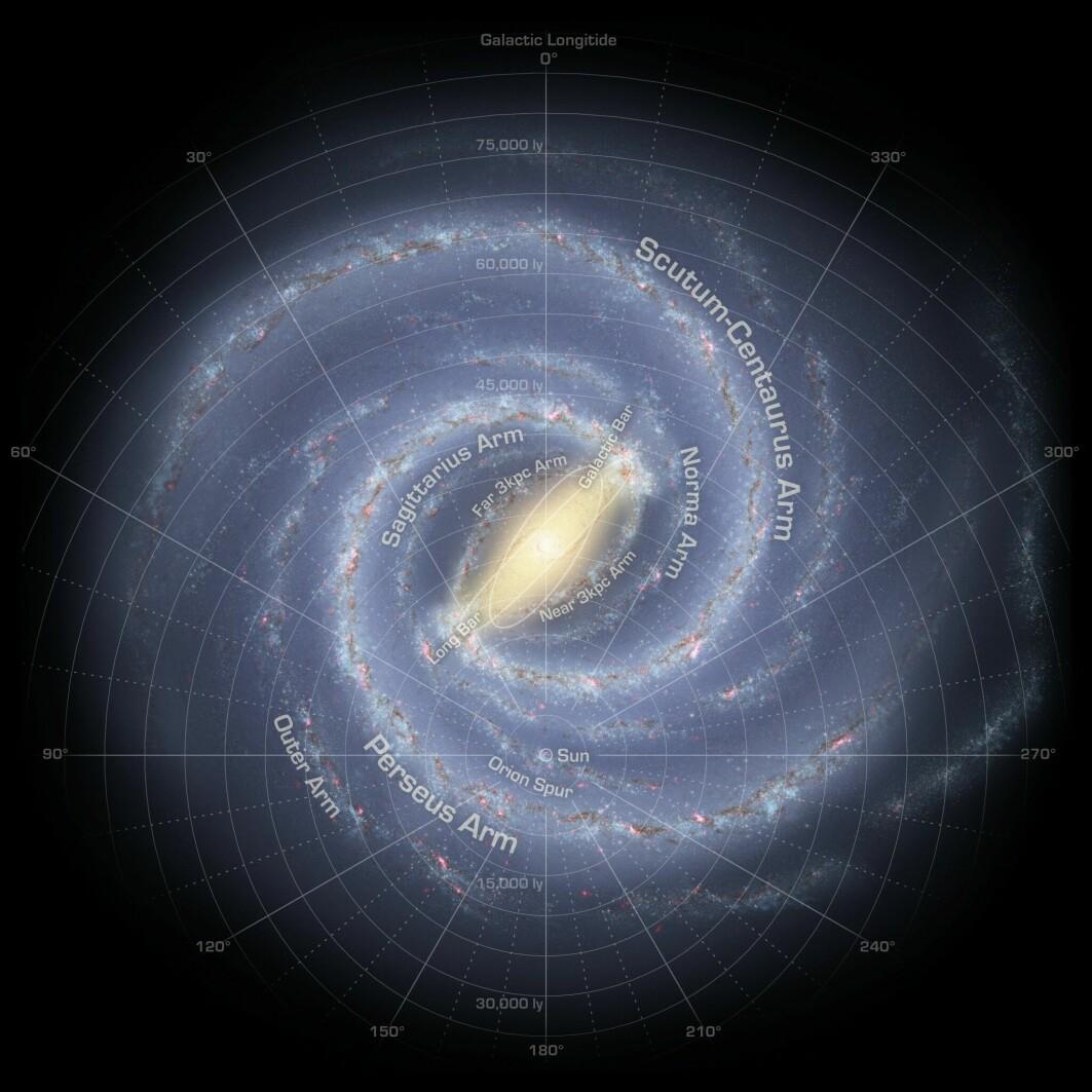 Illustrasjon av hvordan vi tror Melkeveien ser ut ovenfra.