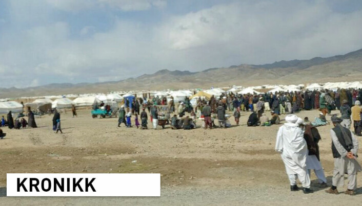 Er et samarbeid med Taliban det rene vanvidd eller den rette veien å gå?