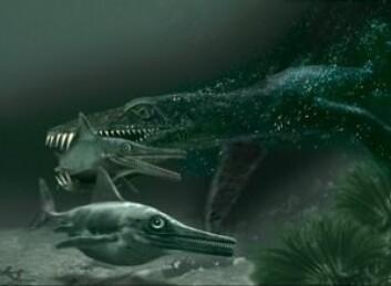"""""""Pliosaurus på jakt etter fiskeøgler. Ill: Tor Sponga"""""""