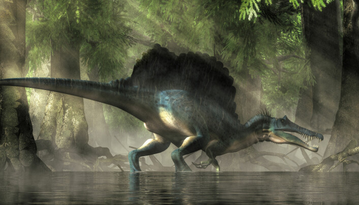 Spinosaurus levde i Nord-Afrika i kritt-tiden.