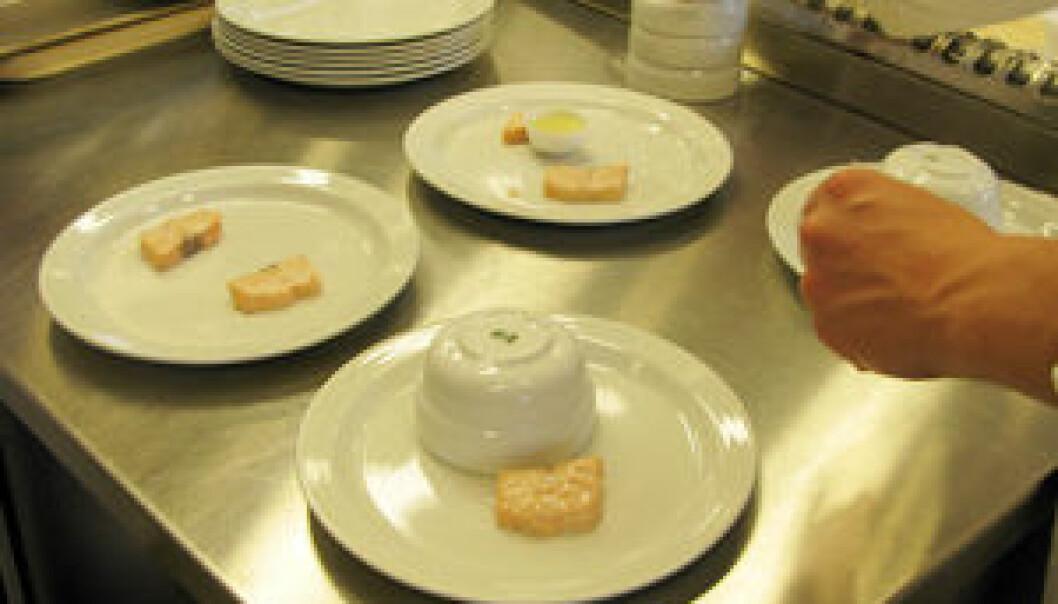 11 sensoriske dommere fikk først smake kun på laksen, deretter kun på saus og så kombinasjonen av saus og laks.