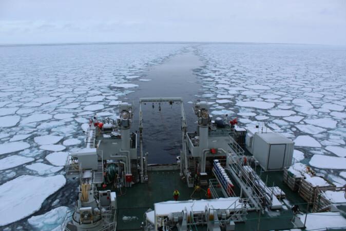 Prøvene ble hentet opp i det nordlige Barentshavet. Her forskningsskipet «Kronprins Haakon» på tokt vinteren 2021.