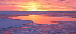Flere tusen år gammel gjørme viste hvordan havisen smeltet i fortida