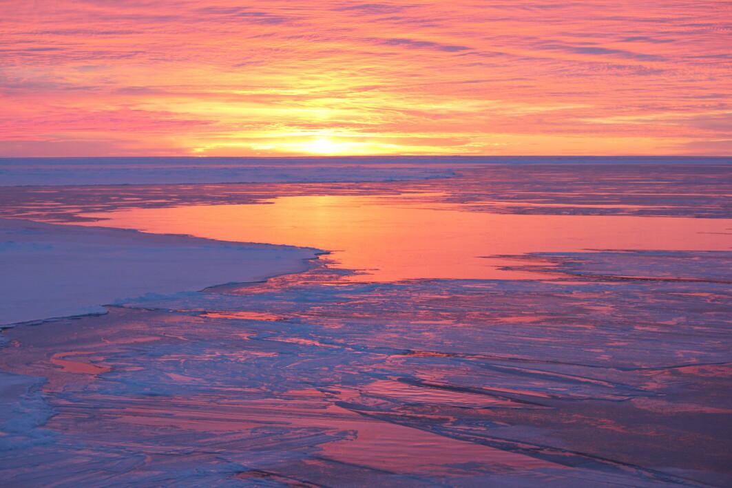 Prøver fra havbunnen nordøst for Svalbard gav forskerne innsyn i hvordan havisen i området var for flere tusen år siden.