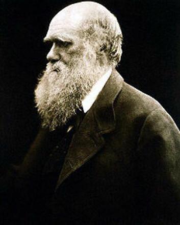 I år feires Darwins 200-årsdag. Hans evolusjonslære lever i beste velgående.