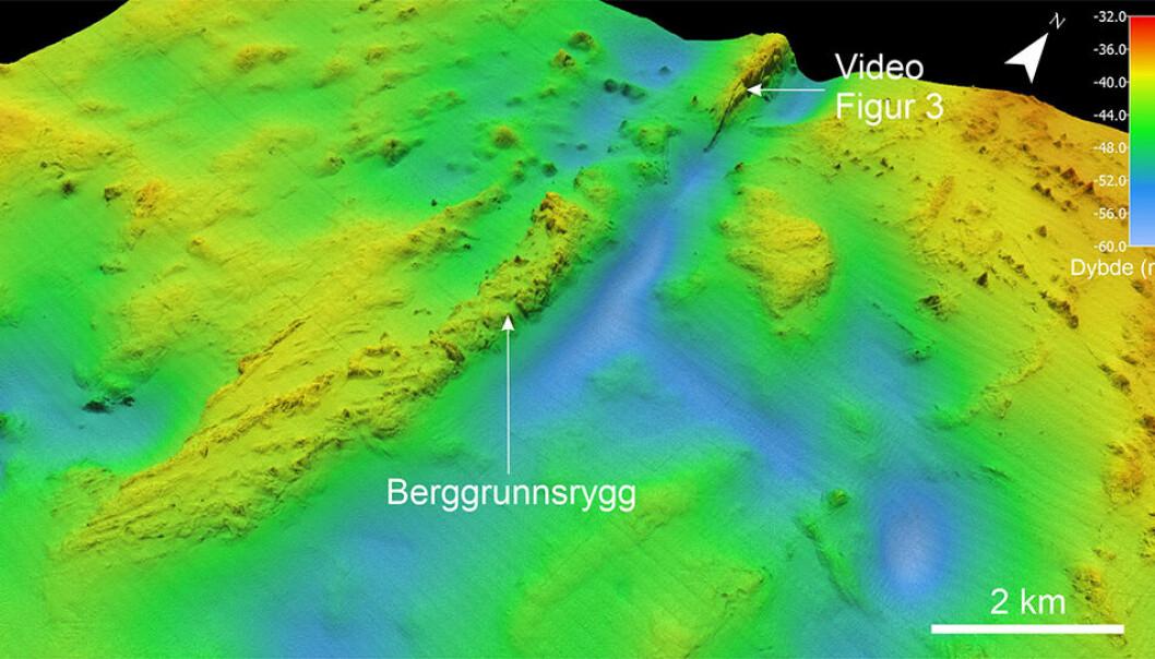 Skyggelagt dybdekart som viser fjellryggen på havbunnen rundt 100 km nordøst for Bjørnøya. Vanndypet på ryggen er 35-40 meter. Den er cirka 10 kilometer lang og opp til 15 meter høy langs østskråningen.