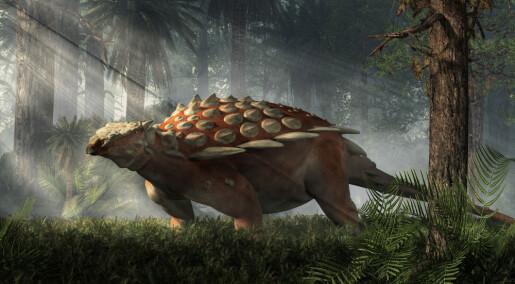 Mystisk dinosaurfossil med pigger forbauser forskere