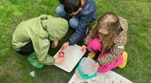 Det er best å lære naturfag i naturen