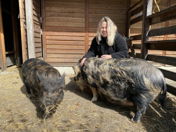 Susanne Borg with the pigs in the garden at Langelinieskolen.