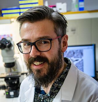 Forsker Erik Burgerhout jobber med å programmere fisken til å bli robust.