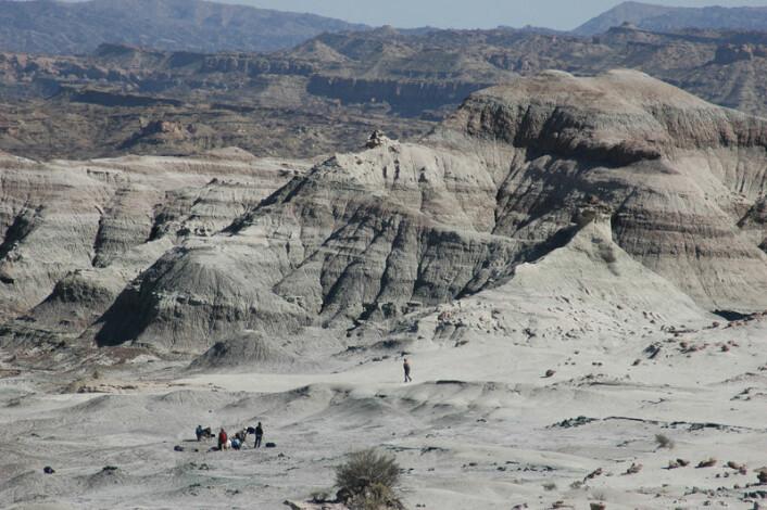 Månedalen nordvest i Argentina, med forskerteamet som graver ut skjelettene av dinosauren Eodromaeus.Dette er det viktigste utgravingsstedet for de tidligste dinosaurene. (Foto: Ricardo Martinez)