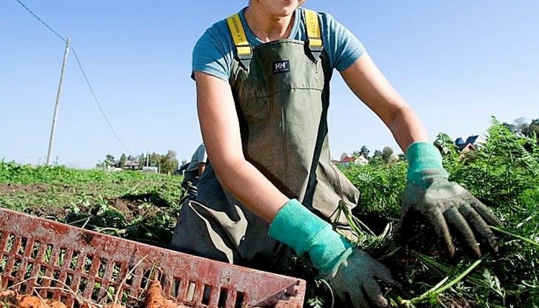 God agronomi eit godt klimatiltak