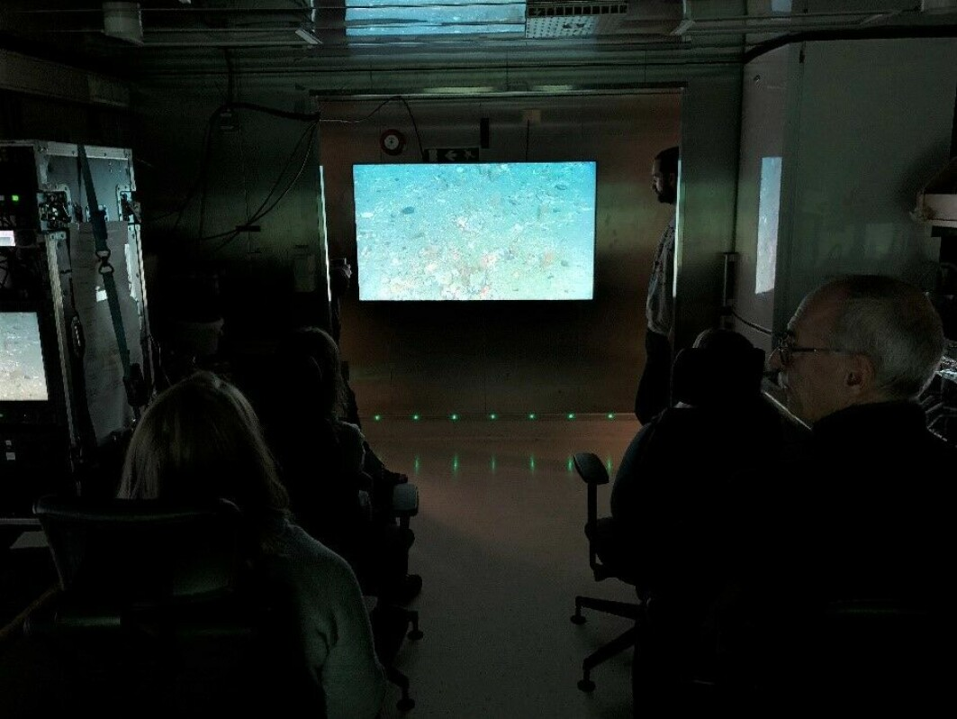 Spenningen i videorommet på G.O. Sars er til å ta og føle på når det er livesending fra videoriggen som seiler over havbunnen i 0,7 knop.