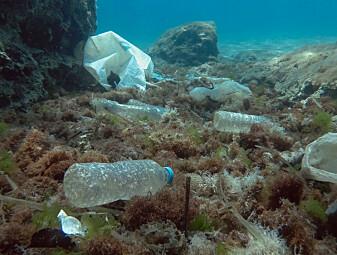 Hvor mye plast er det i Middelhavet?