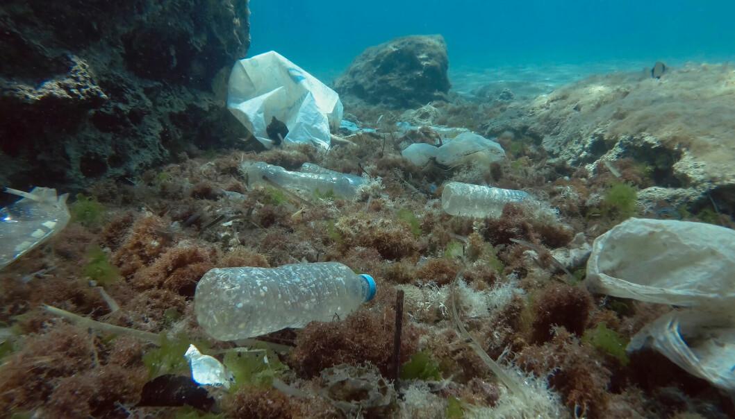 Middelhavet er fullt av plastsøppel - alt fra flasker og poser til ørsmå biter av mikroplast.