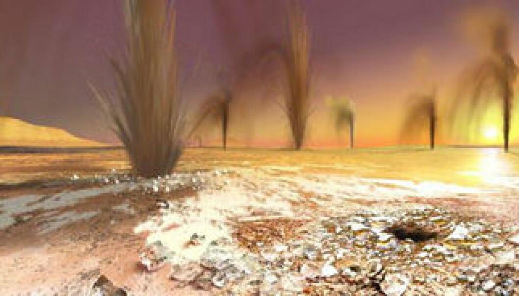 Mørke geysirer på Mars?