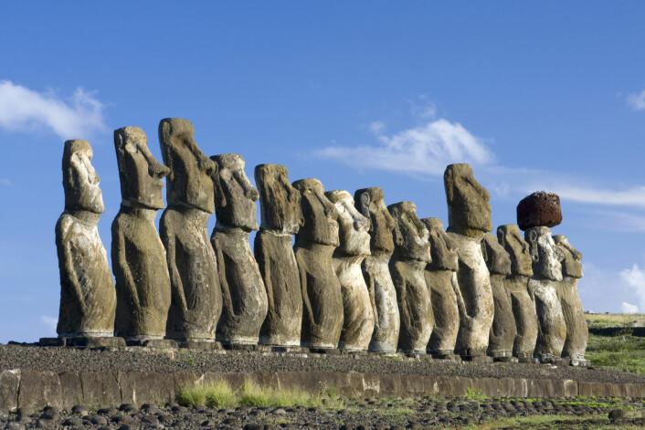 """""""Innbyggerne på Påskeøya brukte så mye av øyas palmeskog på reisverk til de imponerende Moai-statuene at de til slutt ikke hadde nok treverk til hus og båter. (Illustrasjonsfoto: iStockphoto)"""""""
