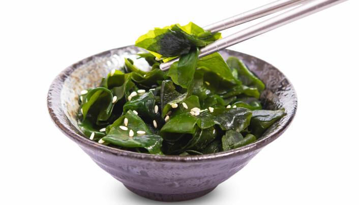 I asiatiske land er det langt vanligere å bruke tare til mat.