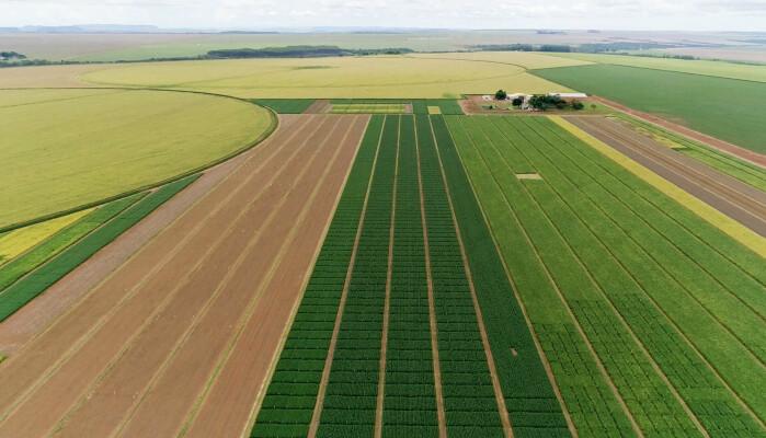 Store områder brukes til å produsere mat til mennesker og dyr.