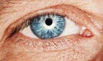 Etter hvert som vi blir eldre, øker risikoen for skader og sykdommer på øyet.