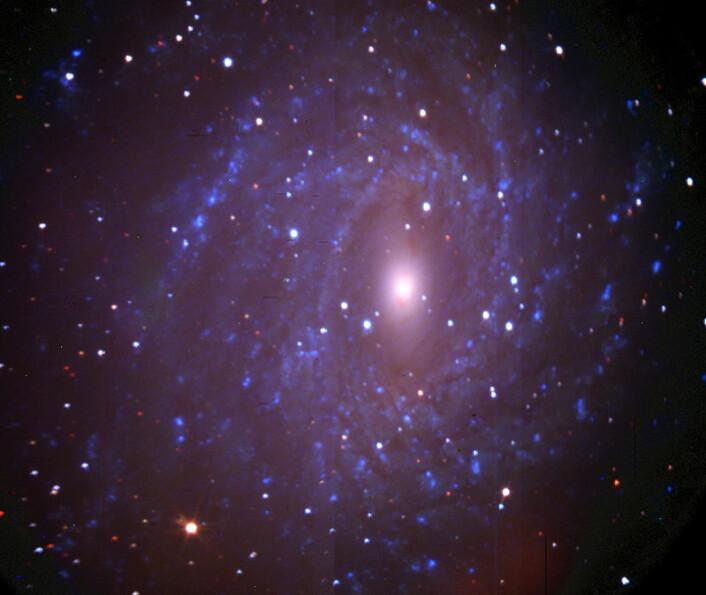 Spiralgalaksen NGC 6744 omtrent 25 millioner lysår fra jorda, i den sydlige stjernebildet Pavo (Påfuglen). Dette bildet var ett av de aller første som ble tatt gjennom SALT-teleskopet. (Foto: SALT)