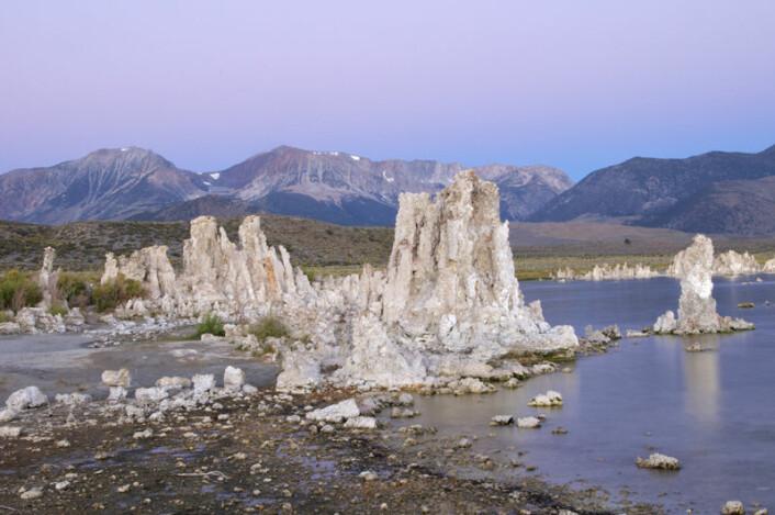 Kalksteinformasjoner (såkalte tufa) i Mono Lake i California. (Foto: Henry Bortman)