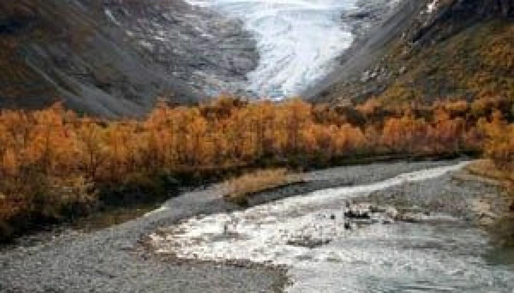 I Bødalen kartlegger man avrenning av vann og løsmasser fra bretungene langs Jostedalsbreen og dalsidene.
