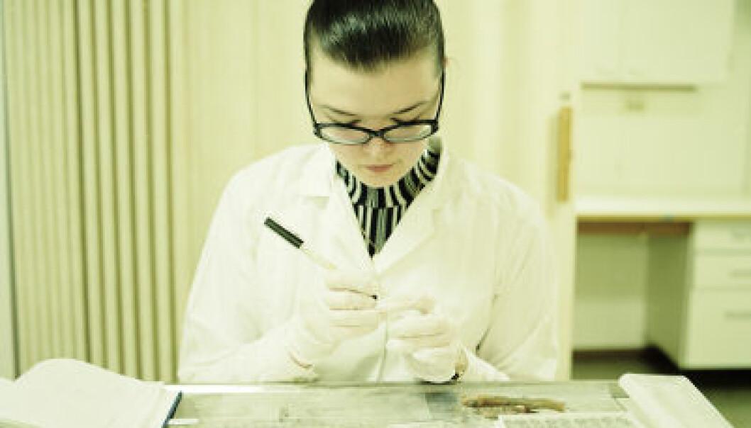 Kunstnere med på forskertokt