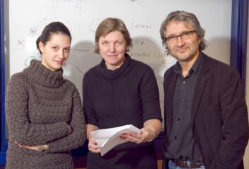 Hilde Kraggerud (i midten), Tormod Næs og stipendiat Elena Menichelli utvikler et program som gjør det mulig å samle mange data om hva forbrukeren vil ha i en og samme undersøkelse. (Foto: Kjell J. Merok, Nofima Mat)