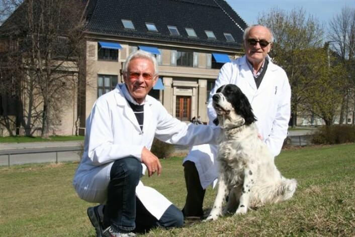 Fv. Hans Gamlem og Knut Nordstoga. (Foto: Mari M. Press/Veterinærinstituttet)