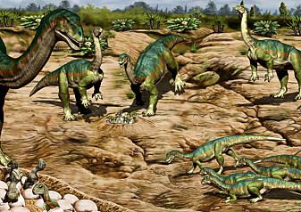Dinosaurer levde i flokk mye tidligere enn forskerne trodde