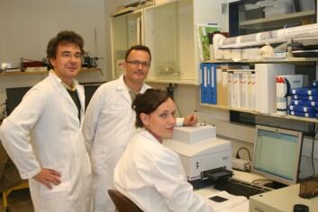 Matforskere kartlegger bakterier. Fra venstre: Achim Kohler (Nofima mat), Henri-Pierre Suso (Elopak) og stipendiat Volha Shapaval (Nofima mat). (Foto: Elopak)
