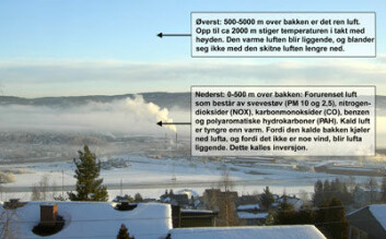Grytelokk over Oslo
