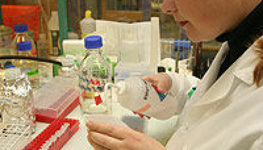 """""""Tålmodig innsats over lang tid har resultert i gode metoder for å teste vaksiner mot fiskesykdommer."""""""