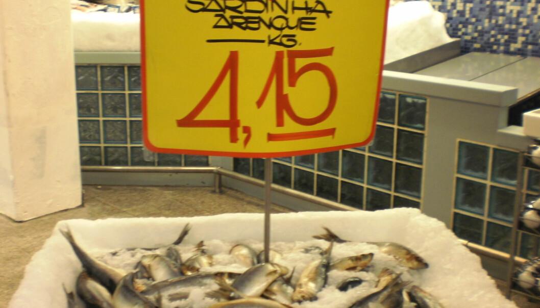 """Sild er en ukjent fiskeart i Brasil, men ligner den brasilianske sardinen. Her selges den som """"Sardinha Arenque"""" (Sardin sild)."""