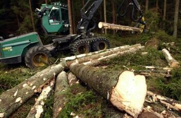 Det brukes stadig mer maskiner til hogst av norsk skog. (Illustrasjonsfoto: www.colourbox.no)