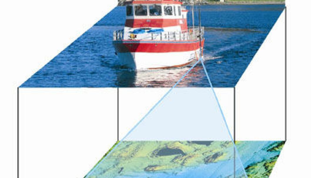 """""""Forskningsfartøyet Seisma scanner havbunnen med avanserte måleinstrumenter. Resultatene kan fremstilles i fargerike tredimensjonale bilder (øverst), som viser fjordene rundt Jøa. (Illustrasjoner: NGU)"""""""