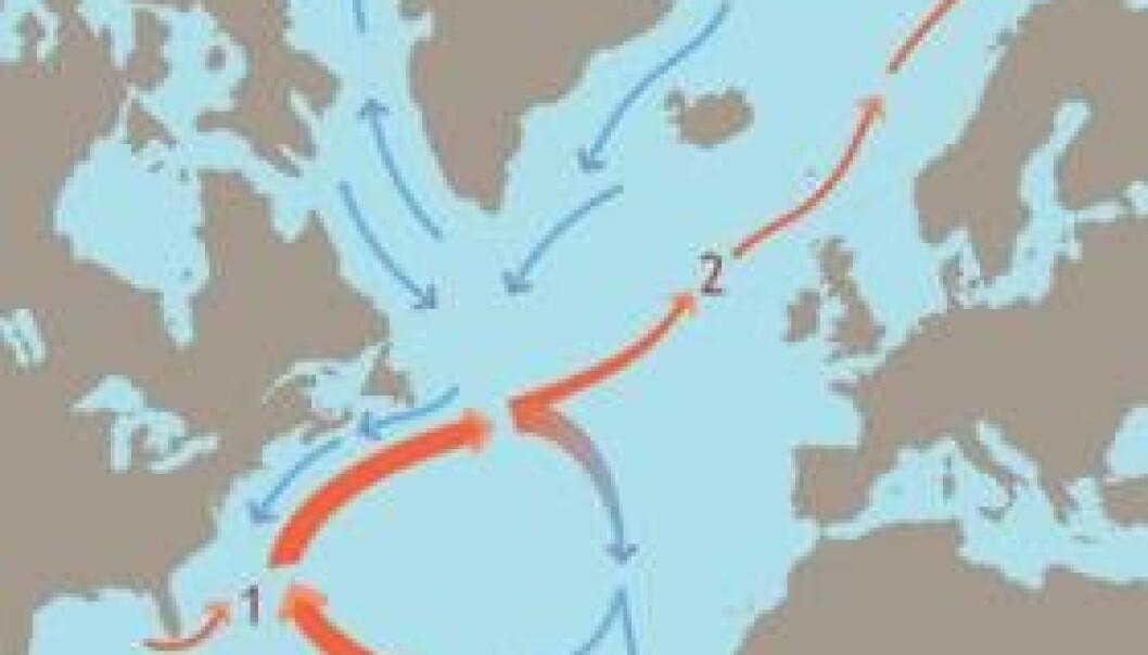 """""""Golfstrømmen vil ikke avta i styrke i overskuelig framtid, viser resultater av de norske klimaforskernes studier."""""""