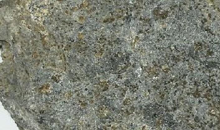 Peridotitt. (Foto:  http://www.mineraly.sk / Wikimedia Commons)