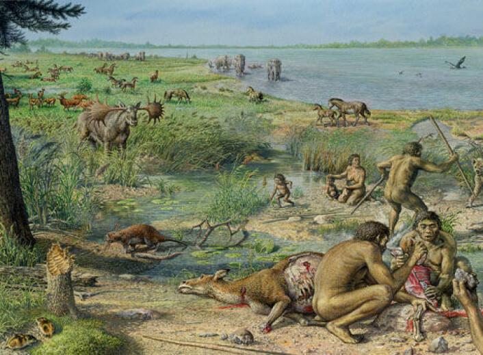 Utgravinger i England har avdekket de eldste spor av tidlige mennesker i Nord-Europa. Denne tegningen viser hvordan en kunstner tenker seg at våre forfedre- og mødre kan ha levd ved elva Themsen for 800 000 - 900 000 år siden. Utravningene er en del av the Ancient Human Occupation of Britain project (AHOB). (Illustrasjon: John Sibbick/AHOB)