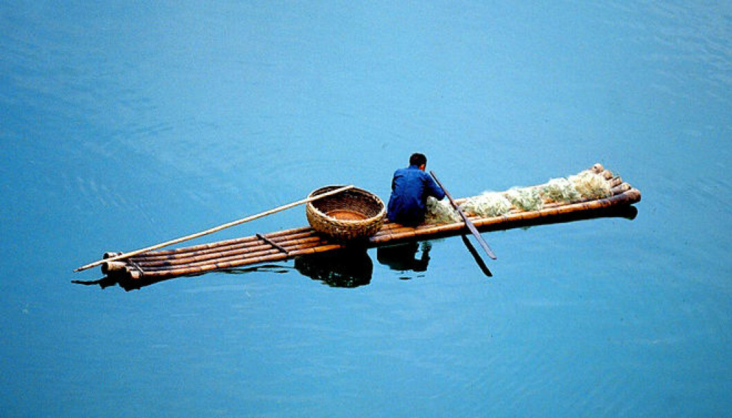 FN-rapport: Vi spiser 52 millioner tonn fisk fra oppdrett